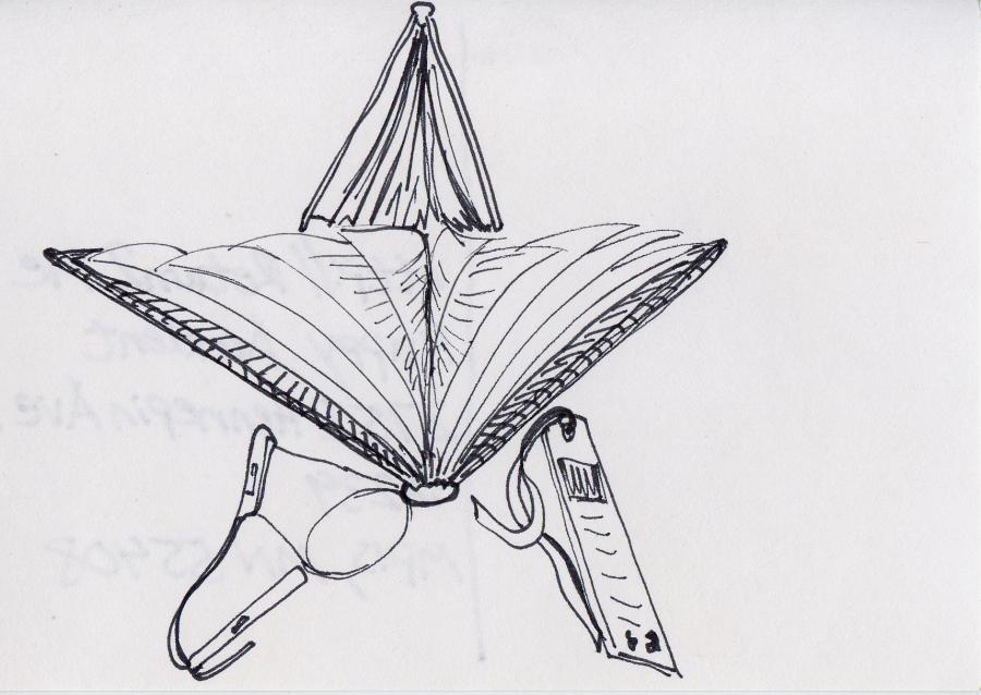 10 Bookish Star