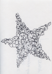 21 Continuous Line Star