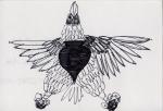 13 Eagle Spade Star