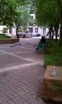 Mears Park 02 RMB#08