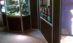 Frog Exhibit - neoxdonut01
