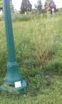 TB-Highland Park Frisbee Golf